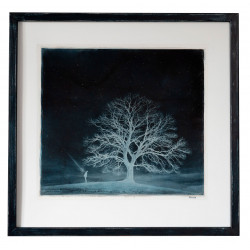 Blue Maple - Alternative photography processed print - Antracotypia (Resinotype) by David Heger